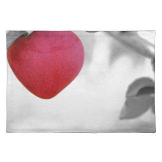 apple-57-eop place mats