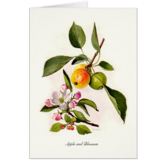 Apple and Blossom Card