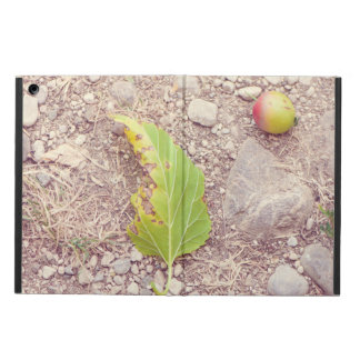 Apple and leaf iPad air cover