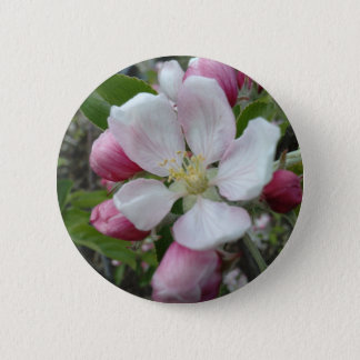 Apple Blossom 2 Inch Round Button