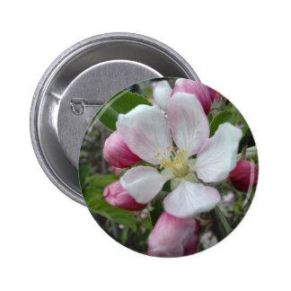 Apple Blossom 2 Inch Round Button