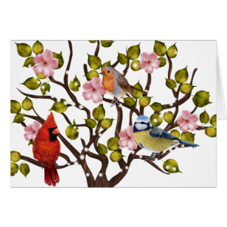 Apple blossom and song bird all occasion notecard
