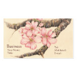 Apple Blossom Branch Pack Of Standard Business Cards
