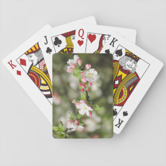 Apple Blossom Branch Playing Cards