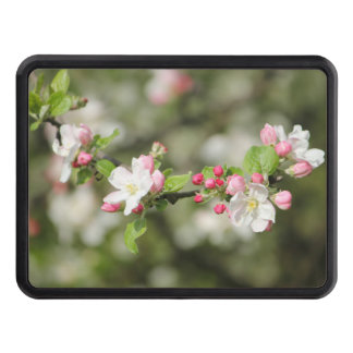 Apple Blossom Branch Trailer Hitch Cover