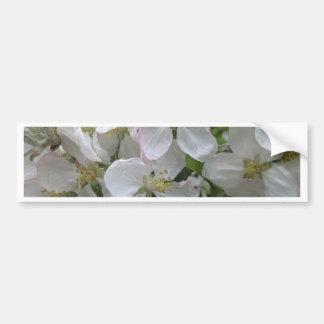 Apple Blossom Bumper Sticker