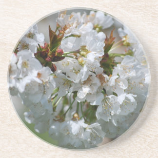 Apple Blossom Coaster