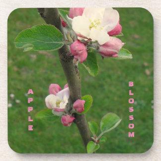 Apple Blossom Drink Coaster