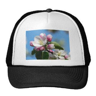 Apple blossom in Spring Trucker Hat