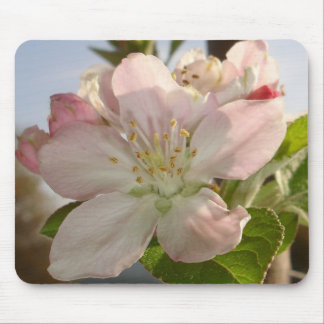 Apple Blossom Macro Mouse Pad