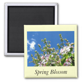 Apple Blossom Square Magnet