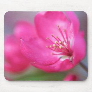 Apple Blossom Mousepad