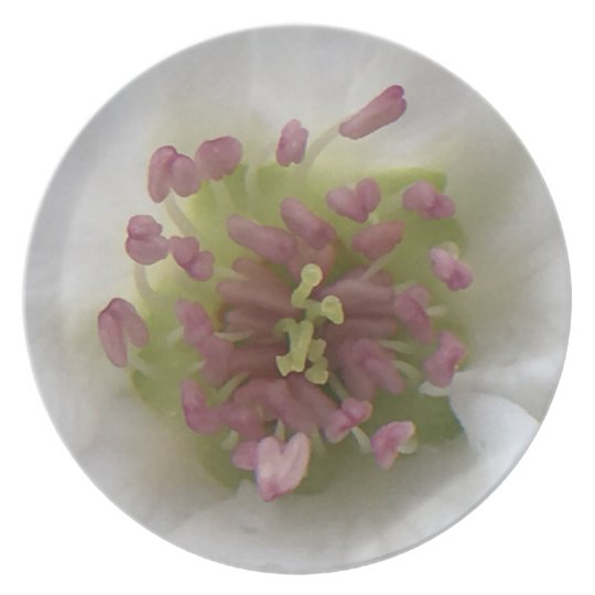 Apple Blossom Plate