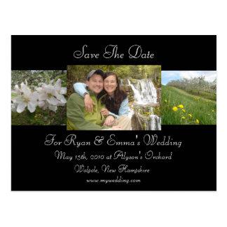 Apple Blossom Save The Date Postcard