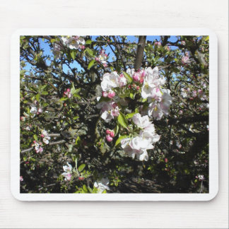 Apple Blossom Time Mouse Pad