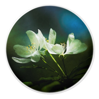 Apple Blossom - Two Flowers Ceramic Knob
