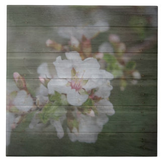 Apple Blossoms and Weathered Wood Tile