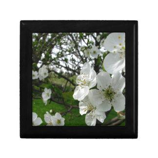 Apple Blossoms Gift Box