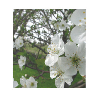 Apple Blossoms Notepad