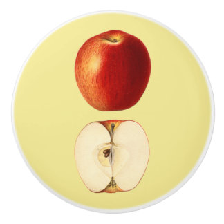 Apple  ~ Botanical Fruit ~ Any Background Color ~ Ceramic Knob
