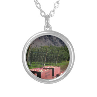 Apple Harvest ib southern BC, Canada Silver Plated Necklace