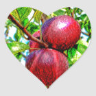 Apple Of My Eye Colour Drawing Heart Sticker