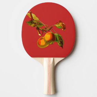 apple ping pong paddle