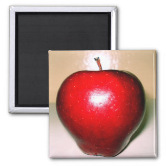 apple red square magnet