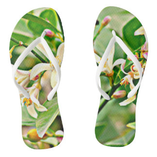 Apple Tree Blossoms Flip Flop Shoes