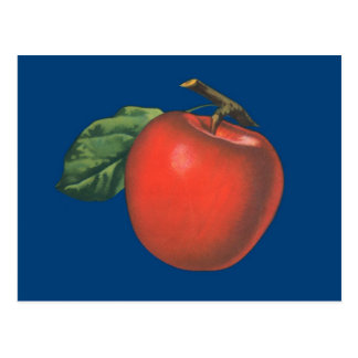 Apple vintage fruit illustration postcard