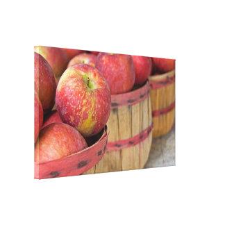 apples in bushel baskets canvas print