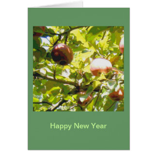Apples in Sunlight and Shadow Card