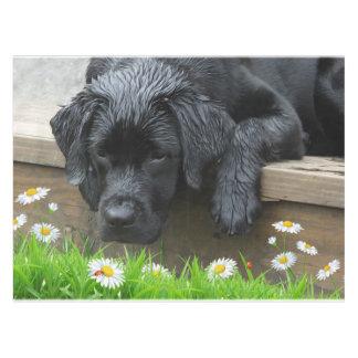 Appreciate the Little Things - Black Labrador Tablecloth