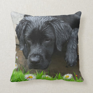 Appreciate the Little Things - Black Labrador Throw Pillow