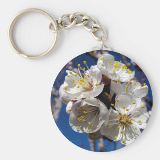 Apricot Blossoms Basic Round Button Keychain