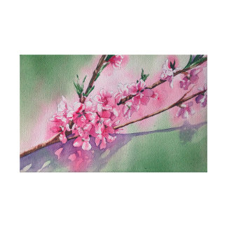 Apricot Blossoms in Spring Canvas Print