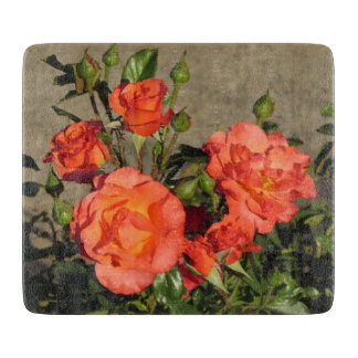 Apricot Cathedral Roses Boards
