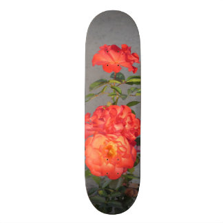 Apricot Cathedral Roses Skateboard Deck