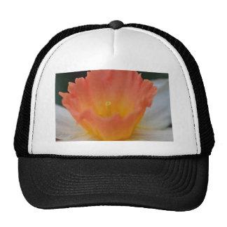 Apricot Daffodil Trucker Hat