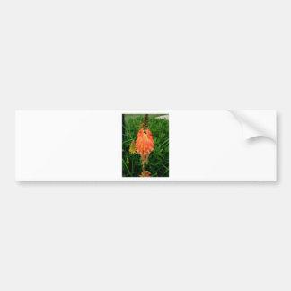 Apricot Fleur Bumper Sticker