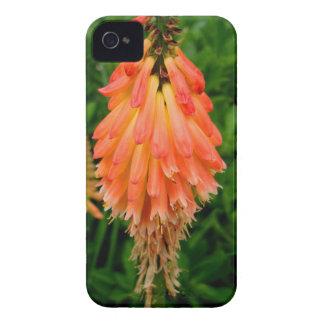 Apricot Fleur Case-Mate iPhone 4 Case