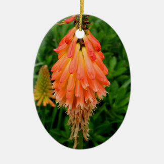 Apricot Fleur Ceramic Oval Ornament
