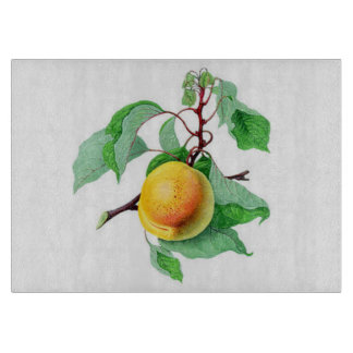 Apricot Fruit Tree  Branch Colorful Cutting Board