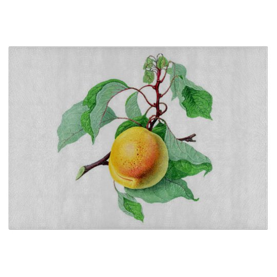Apricot Fruit Tree  Branch Colourful Cutting Board