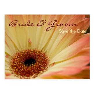 Apricot Gerbera • Save the Date Postcard