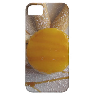 Apricot jam covered ice cream cake iPhone 5 case