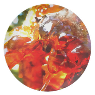 Apricot Resin Abstract Plate