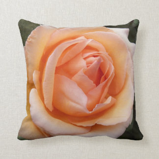 Apricot Rose Floral Throw Pillow