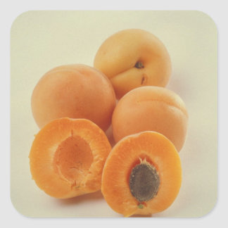 Apricots For use in USA only.) Square Sticker