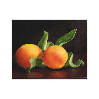 Apricots Original Art Canvas Print